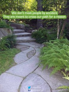 We don't meet people by accident They are meant to cross our #path for a reason  #saying #journey #soulgroup #inspire