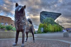 Husky Stadium- Seattle, Washington. Statue's old location.  Now in front of the Dawg Pack entrance of newly renovated stadium.