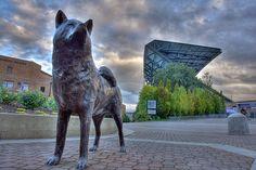 Husky Stadium- Seattle, Washington