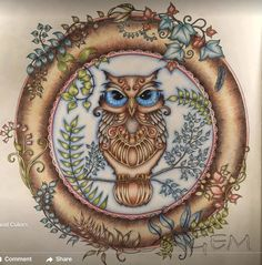 Enchanted Forest Coloring Book Pages Pictures Johanna Basford Secret Garden Owl Art Decoupage Joanna