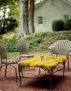 Albert Hadley . Here's a recipe for an outdoor glass table: plant the top with moss, water frequently, and keep it in the shade. LOVE IT ALL!!!!!