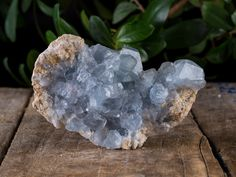 Heavenly Blue Celestite Huge Cluster W/ Gemmy Crystals by PACIFICMINERALS on Etsy
