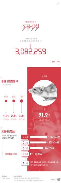 [그래픽뉴스]지난해 국내 동물실험 300만마리 넘어 Ppt Design, Book Design, Graphic Design, Information Design, Information Graphics, Editorial Layout, Editorial Design, Promotional Design, Social Media Banner