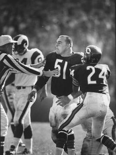 size: Premium Photographic Print: Linebacker for the Bears Dick Butkus : Subjects Nfl Football Players, Bears Football, Football Memes, Sports Memes, 49ers Players, Redskins Football, School Football, Sport Football, Football Cards