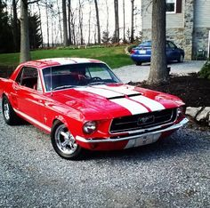 67 mustang,i want this!!!