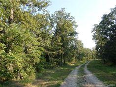 3320 Danz Forest Dr, Rosebud, MO 63091