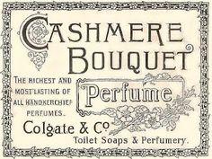 Cashmere Bouquet perfume