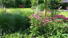 Particuliere tuin met veel beplanting & gazon aangelegd door hoveniersbedrijf Snoeren Cultuurtechniek uit Terheijden.