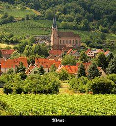 transylvanialand:  Alsace by S. Lo on Flickr.