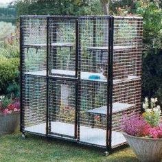 UK cat cages for breeders, owners, catteries, vets and rescue centres. Cat Cages Indoor, Ferret Cage, Cat Magazine, Fabric Manipulation Techniques, Cat Pen, Cat Kennel, Palomar, Rabbit Cages, Cat Enclosure
