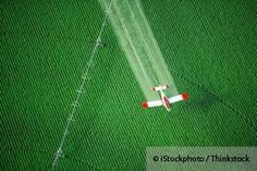 Roundup and Glyphosate Toxicity Underestimated, Study Says