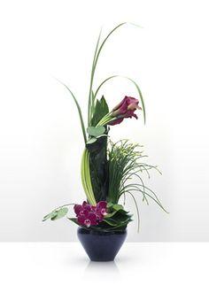 Sebastien: The French Floral Artist - The Company  Sebastien Lathuile