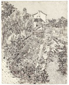 Cottage Garden by Vincent Van Gogh, reed pen, quill, and ink drawing over graphite, 1888.