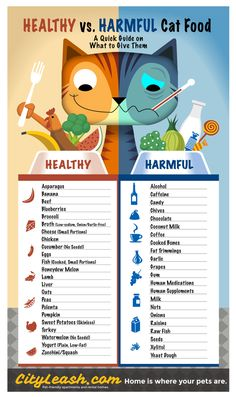 Guía para imprimir de alimentos sanos y nocivos para gatos - Printable Guide on Healthy and Harmful Cat Food http://blog.cityleash.com/healthy-and-harmful-foods-for-cats/