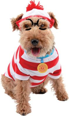 dogs in glasses & costumes | Waldo striped shirt, hat and glasses for your pet. Large fits dogs ...