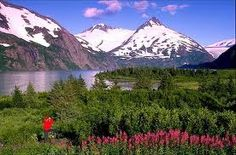 alaska scenery - Google Search