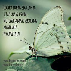 Logika bukan segalanya. Tetap doa & usaha. Mujizat sampai sekarang masih ada. Percaya saja! - www.belajarforex.biz  #motivasi #motivation #motivator #renungan #pepatah #quotes #quote #quoteoftheday #inspirasi #inspiration #wisdom #morning #pagi #ID #indonesia #jakarta #bandung #semarang #medan #surabaya #instagood #instadaily  #instapic #instaquote #instanesia #iphonesia #picoftheday #instadonesia #instaindo #loveindonesia