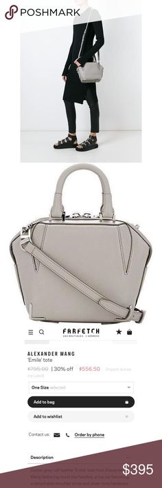 ALEXANDER WANG EMILE CROSSBODY Light grey in color. Goes with everything. Keeps its shape which is so nice because it always looks fresh. Priced to sell! Alexander Wang Bags Crossbody Bags