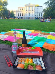 sushi picknick in Haarlem, The Netherlands