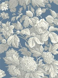 Check out this wallpaper Pattern Number: KC1845 from @Janet Russell-Snider Blinds and Wallpaper � decorate those walls!