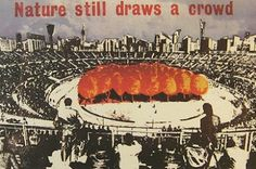 Jamie Reid: 'Nature Still Draws A Crowd' Punk, English Artists, Art For Art Sake, Print Magazine, Graphic Design Inspiration, Contemporary Artists, Architecture, Be Still, Crowd