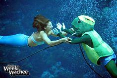 #Mermaid Marissa and Chester the Sea Turtle celebrate!!! It's Friday!! #TGIF #weekiwachee