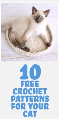 Crochet Diy 10 Free Crochet Patterns For Your Cat! - Crocheting is a great way to spend the winter months and it's even more fun if you are making something for your cat! Here are 10 crochet patterns to make some fun items for your feline. Crochet Diy, Chat Crochet, Crochet Gratis, Crochet Home, Love Crochet, Learn To Crochet, Beautiful Crochet, Crochet Ideas, Knitting Patterns