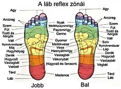 Masszírozd meg minden este a talpadat, elmondom, miért! Foot Reflexology, Lunge, Muscle Anatomy, Massage Benefits, Lymphatic System, Cancer Treatment, Massage Therapy, The Cure, Health Fitness