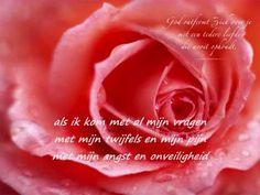 als het leven soms pijn doet  Reni & Elisa Ook deze werd bij het afscheid van mijn vader op 7 mei 2012 gedraaid.