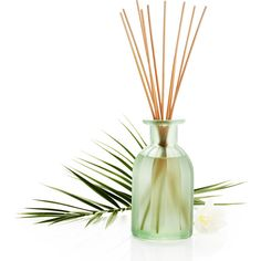 Pier 1 Imports Clear Sea Grass Reed Diffuser (280 ZAR) ❤ liked on Polyvore featuring home, home decor, home fragrance, clear, fragrance reed diffuser, scent diffuser, scented reed diffuser, reed diffuser and fragrance diffuser