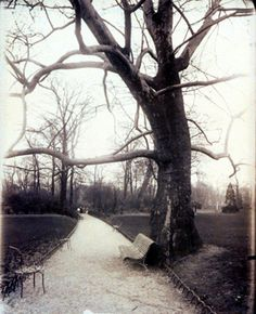 """Eugène Atget documentation of Paris and the country side of France is beautiful. His """"street"""" style gives a peek of what the past looked like."""