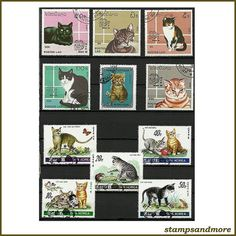 Small collection of cat postage stamps. In mixed condition, please see picture. (Black stock card not included) Great for adding to a stamp