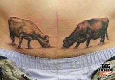 13 das mais bizarras tatuagens pubianas
