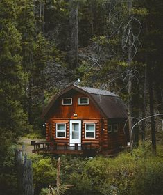 Cabin Love - holiday home