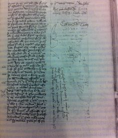 "A 1420 MSS defaced by cat pee.  Translation of note: ""[Here is nothing missing, but a cat urinated on this during a certain night. Cursed be the pesty cat that urinated over this book during the night in Deventer and because of it many others [other cats] too. And beware well not to leave open books at night where cats can come.]"""