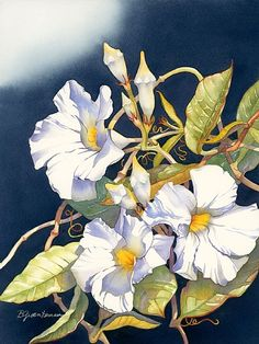 Vining For You by Barbara Groenteman Watercolor ~  x