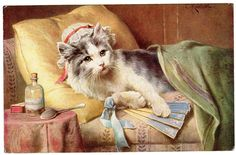 Postcard Cat on Chaise w Fan T s N 1003 Signed Reichert | eBay