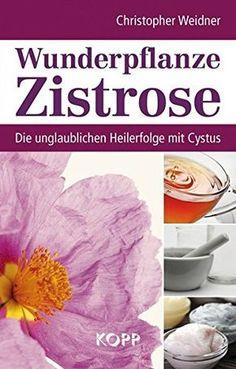 Zistrosentee gegen Grippe und Borreliose - Wirksamkeit von Cistus incanus