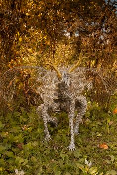 Dancing and flying wire fairies, metal art, Wire fairy sculpture. Breathtaking one of a kind stainless steel wire fairy sculpture. Fantasy Wire, Forest Plants, Wire Sculptures, Frou Frou, In The Tree, Wire Art, Heron, Faeries, Metal Art