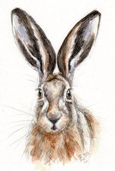 ORIGINAL Watercolour Wildlife Animal by BelindaElliottArt on Etsy, £24.00 #hare #painting