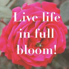 Spring sayings Live Life in full bloom! Love this inspiring quote and just in time for blooming flowers and welcome spring