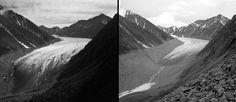 McCall Glacier melt, Alaska.  Left: July 1958. Right: August 14, 2003.