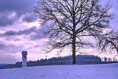 DEN PRO TEBE: Holá zima v krajině s kapličkou a stromem