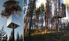 the treehouse hotel in sweden. can the name be any more suiting?