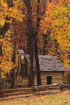 Cabin in the Woods Autumn Scenery, Cabins In The Woods, Autumn Leaves, House Styles, Amazing, Plants, Beautiful, Decor, Decoration