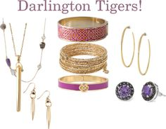 """""""Darlington Tigers"""" by robin-willis on Polyvore"""