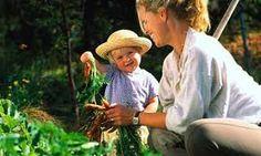Resultado de imagem para children's vegetable garden ideas