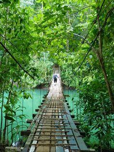 Footbridge near Drake's Bay on the Osa Peninsula-Costa Rica