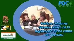 Políticos catalanes debaten acerca del #cannabis!