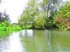River Evenlode.